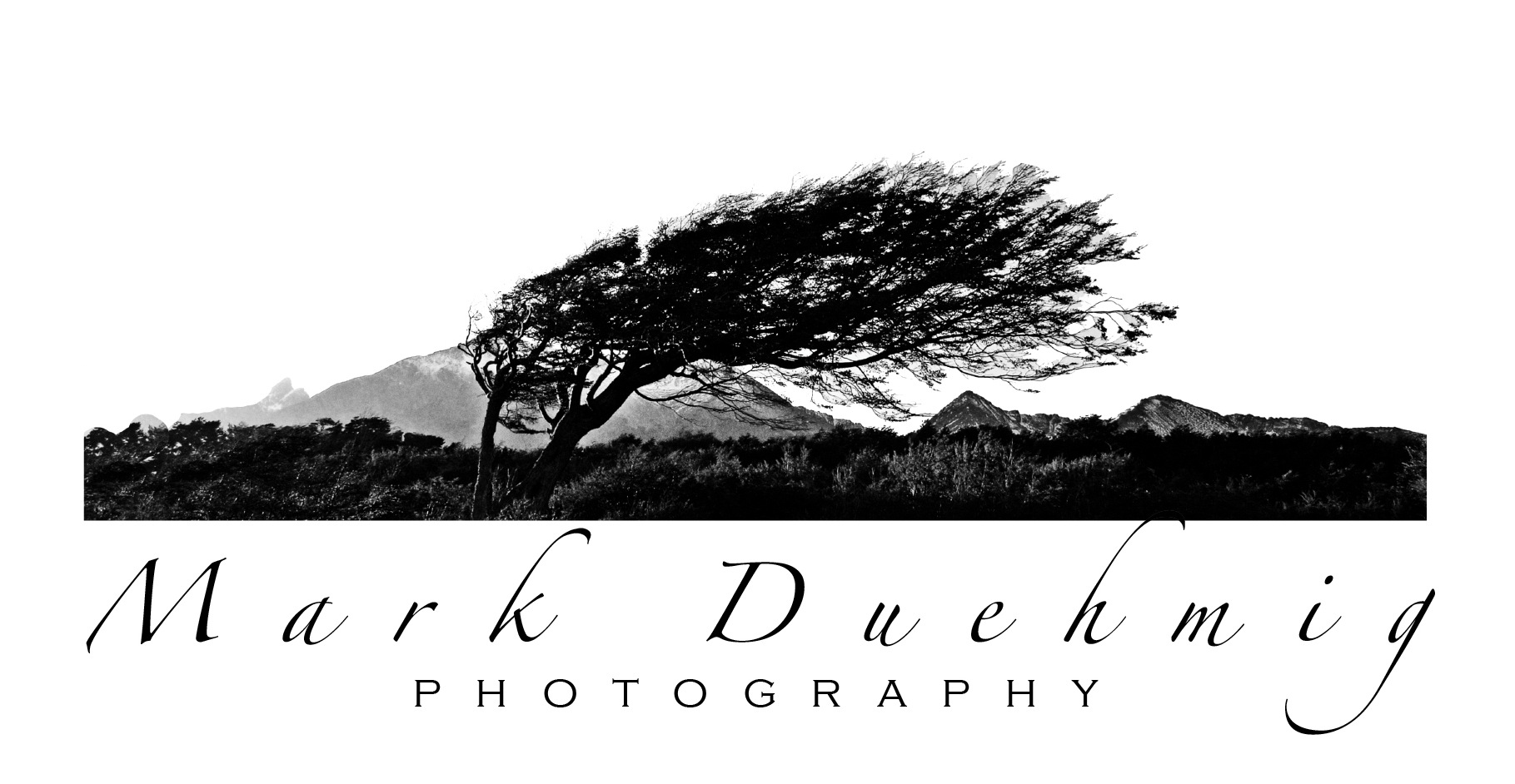 Mark Duehmig - Artist Website